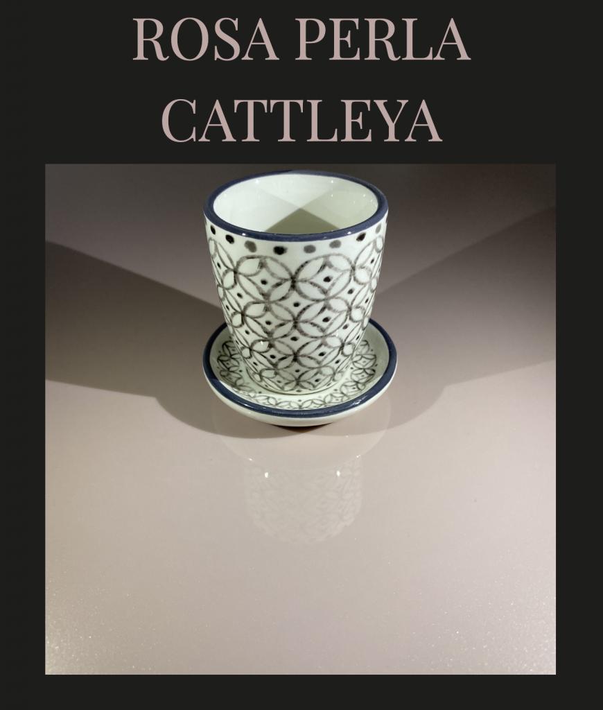 Collezione SKY – Rosa Perla Cattleya